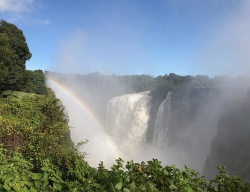 Victoria Falls – a big bucket list TICK!