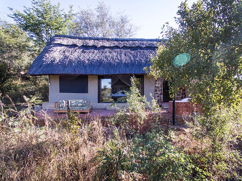 A real bush veld experience