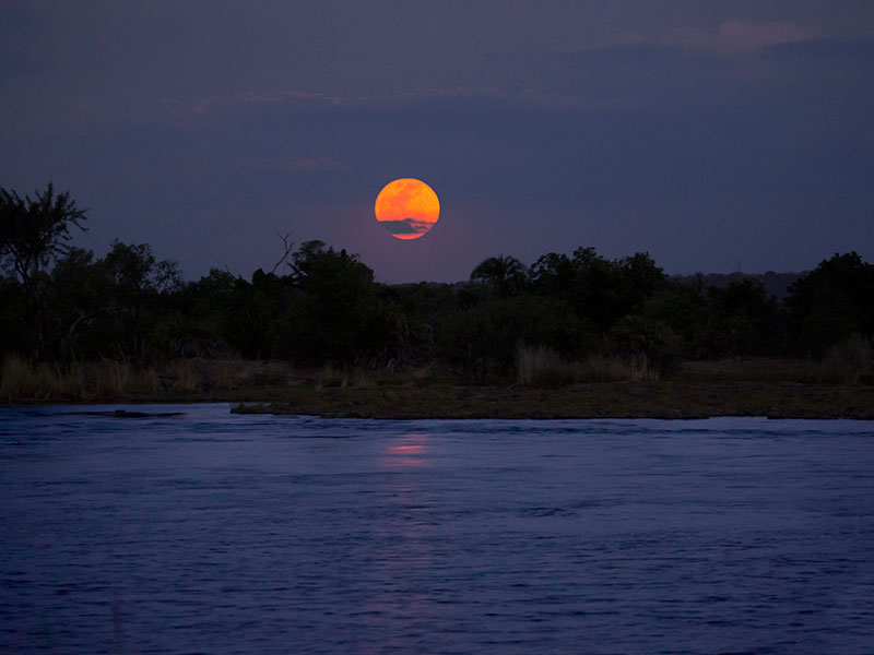 Full moon on a Zambezi dinner cruise